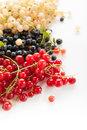 Berries ripe blueberries red and white currants on a white background Royalty Free Stock Photo