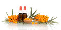 Berries and sea buckthorn oil in small bottles  on white. Royalty Free Stock Photo