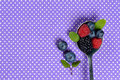 Berries still life Royalty Free Stock Photo