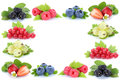 Berries strawberries blueberries red currant berry fruits frame Royalty Free Stock Photo