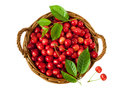 Berries of sweet cherry in a basket on white background Royalty Free Stock Photo