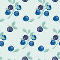 Berries vector background illustration. Royalty Free Stock Photo