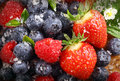 Berry background with water droplets on fresh ripe red strawberries raspberries and blueberries closeup view Stock Photography
