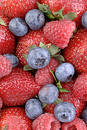 Berry Berrylicious 1 Royalty Free Stock Photo