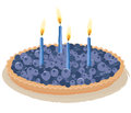 Berry birthday cake Stock Photography