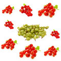 Berry collage, gooseberries and red currants Royalty Free Stock Image