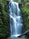Berry Creek Falls Royalty Free Stock Photo