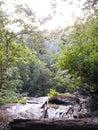 Berry Creek falls 1 Royalty Free Stock Photo