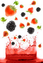 Berry falling in juice Royalty Free Stock Photo
