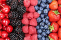 Berry fruits in a row with strawberries, blueberries and cherries Royalty Free Stock Photo