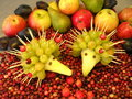 Berry and fruits various hedgehogs create from grape Royalty Free Stock Image