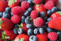 Berry madness! Royalty Free Stock Photography