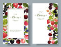 Berry mix banners
