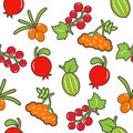 Berry seamless background. Royalty Free Stock Photography