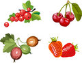 Berry set Stock Photos