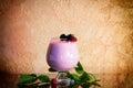 Berry smoothie, healthy juicy vitamin drink diet or vegan food concept, fresh vitamins, homemade refreshing fruit beverage