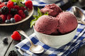 Berry sorbet ice cream organico casalingo Immagini Stock