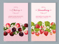 Berry vertical banners Royalty Free Stock Photo