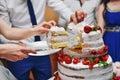 Berry wedding cake Royalty Free Stock Photo
