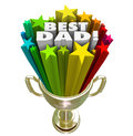 Best dad prize award trophy top father parenting skills words and stars in awarded to the demonstrating excellent or outstanding Royalty Free Stock Images