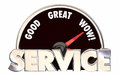 Best Service Top Rated Company Business Speedometer Words