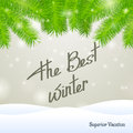The best winter superior vacation on snow and gray background with spruce branch Royalty Free Stock Images