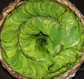 Betel nut basket Royalty Free Stock Image
