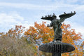 The Bethesda fountain in an autumn morning Royalty Free Stock Photo