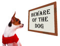 Beware Of The Dog Sign Royalty Free Stock Photo