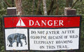 Beware of elephants sign in jungle Royalty Free Stock Photos