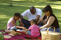 Bi-racial Familien-Picknick Stockfoto