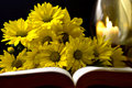 Bible and flowers Stock Images