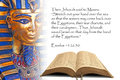 Bible prophecy egypt Royalty Free Stock Photo