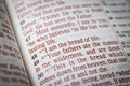 Bible text - I am the bread of life - John 6:48 Royalty Free Stock Photo