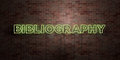 BIBLIOGRAPHY - fluorescent Neon tube Sign on brickwork - Front view - 3D rendered royalty free stock picture Royalty Free Stock Photo