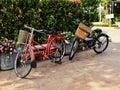 Bicicleta linda del estilo del vintage en jardín Fotografía de archivo libre de regalías