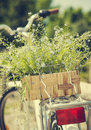 Bicycle with a bucket of summer blue flowers. Royalty Free Stock Photo