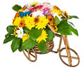 Bicycle With Flowers isolated Stock Photo