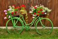 Bicycle and flowers a nice old with on the side of the street of a small village in tuscany italy Royalty Free Stock Image