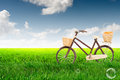 Bicycle on the green lush meadow with blue sky Royalty Free Stock Photo