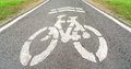 Bicycle lane in a park on asphlat road Royalty Free Stock Photography