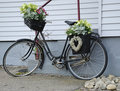 Bicycle like a flower pot Royalty Free Stock Images