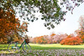 Bicycle in the park close up Stock Images