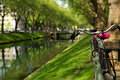 Bicycle in the park near the river on bright sunny summer green Royalty Free Stock Photo
