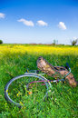 Bicycle partially hidden by tall grass discarded Royalty Free Stock Image