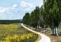 Bicycle road in tihany peninsula hungary Stock Photography
