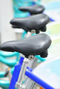 Bicycle seats Stock Photos
