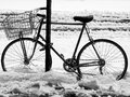 Bicycle in snow Royalty Free Stock Photos