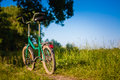 Bicycle stands on the footpath in the forest Stock Photography