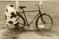 Bicycle with steel milk container at the back old style Royalty Free Stock Photography
